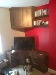 click to see larger image of Home Entertainment Unit. Installed in London SW2 (Dog not included!!)
